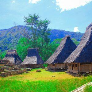 Traditioneel dorp wologai
