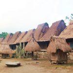 Upacara Pembuatan Rumah Adat Etnis Ngada