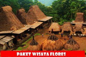 fiori turistici paket, Komodo, Labuan Bajo
